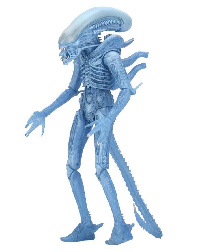"""Aliens 7/"""" Warrior Alien Kenner Action Figure Series 11 Neca Official"""